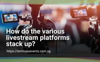 How do the various livestream platforms stack up?